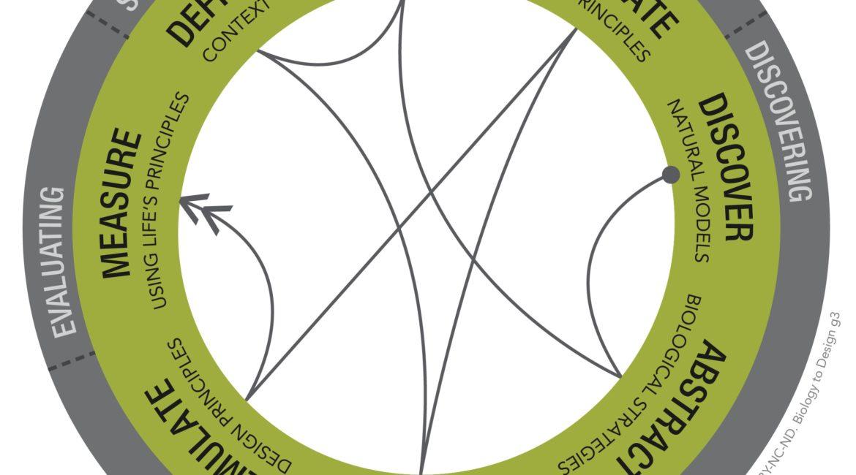 Biomimicry DesignLens