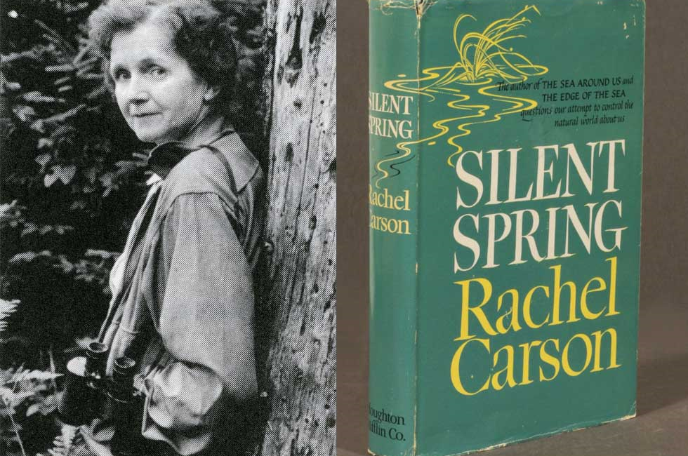 The Silent Spring