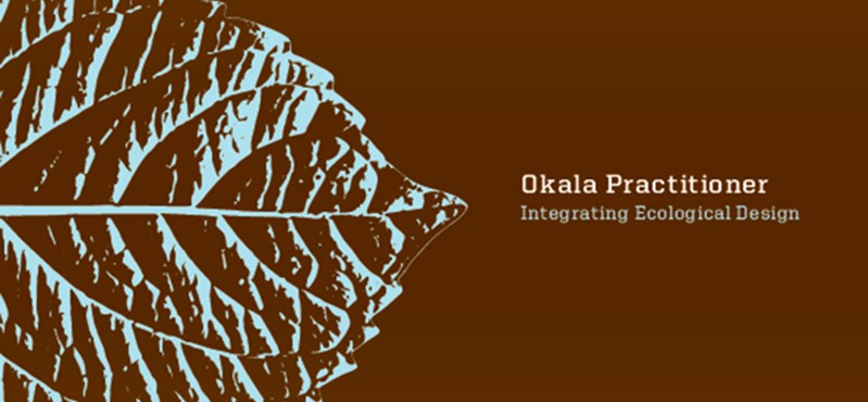 Okala Practitioner Guide