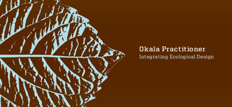Okala Practitioner Guide